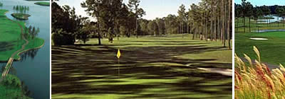 Enjoy a Membership to three (3) Premium Grand Strand Golf Courses for one price.