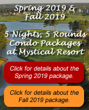 Spring 2019 and FALL 2019 PACKAGE DEAL